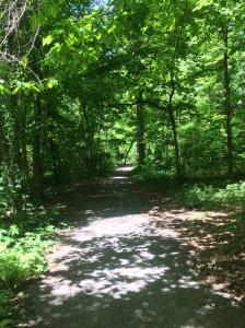 Trail Running in Memphis