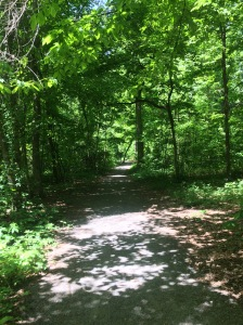 Trail Running in Memphis