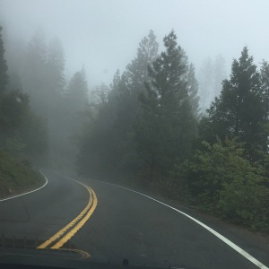 A misty & challenging exit
